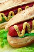 Hot Dog Close Up — Stock Photo