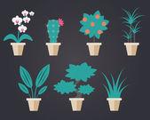 Flat style Houseplants — Stock Vector