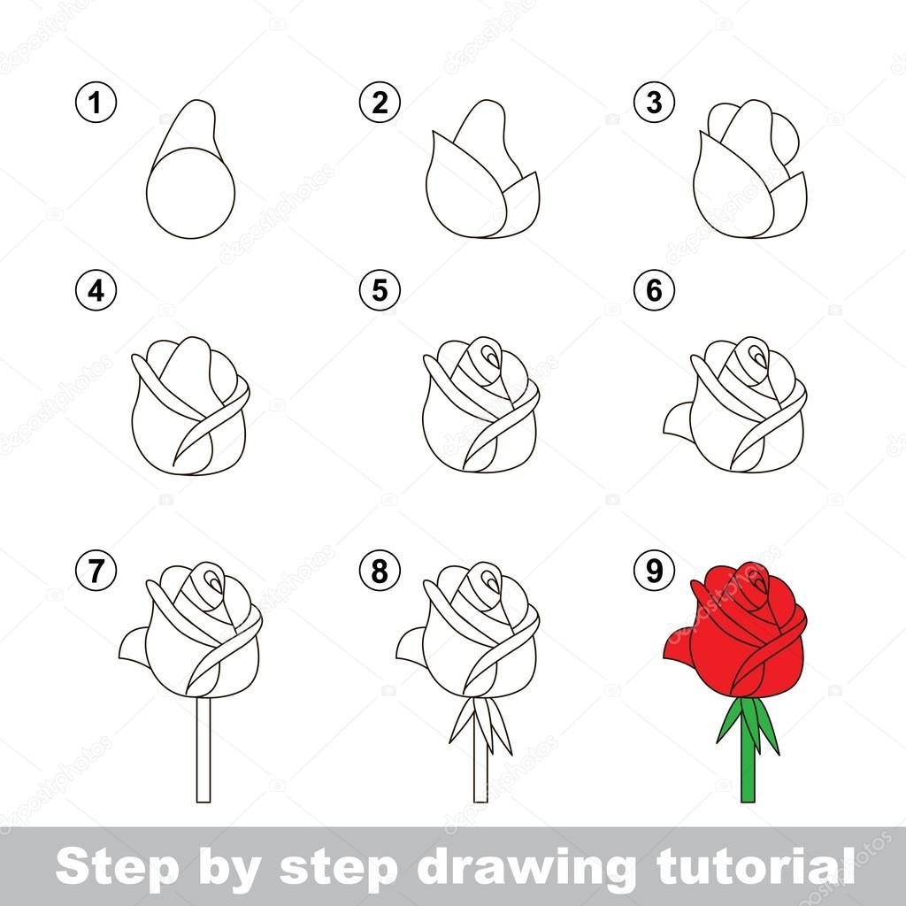 Tekening tutorial hoe teken je een roos stockvector for How to make doodle art