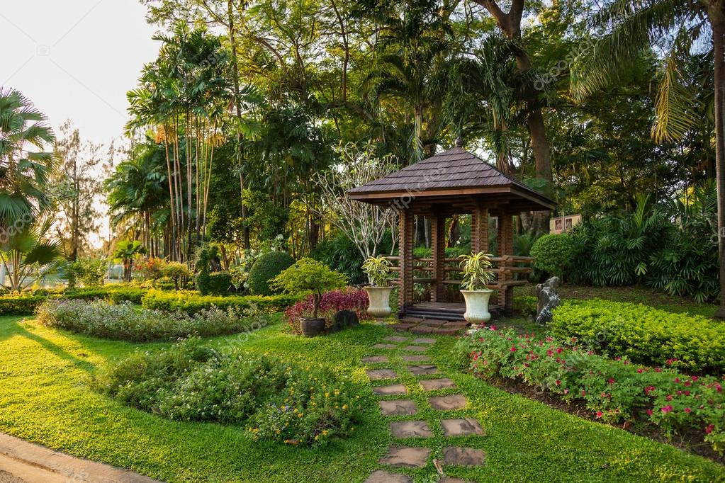 Plantas ornamentales y rboles en el jard n palmeras for Arboles ornamentales jardin