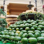 Fountain with melons and watermelons — Stock Photo