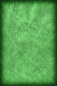 Photograph of Old Emerald Green Stained Cowhide, Weathered, Coar — Stock Photo