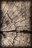 Old Square Timber Bollard Weathered Rotten Cracked Bituminous Grunge Surface Texture — Stock Photo