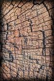 Old Timber Bollard Weathered Rotten Cracked Bituminous Top Surface Vignette Grunge Texture — Stock Photo
