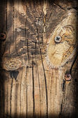 Old Weathered Cracked Rotten Wooden Floorboards Vignette Grunge Texture with Rusty Screws Embedded — Stock Photo