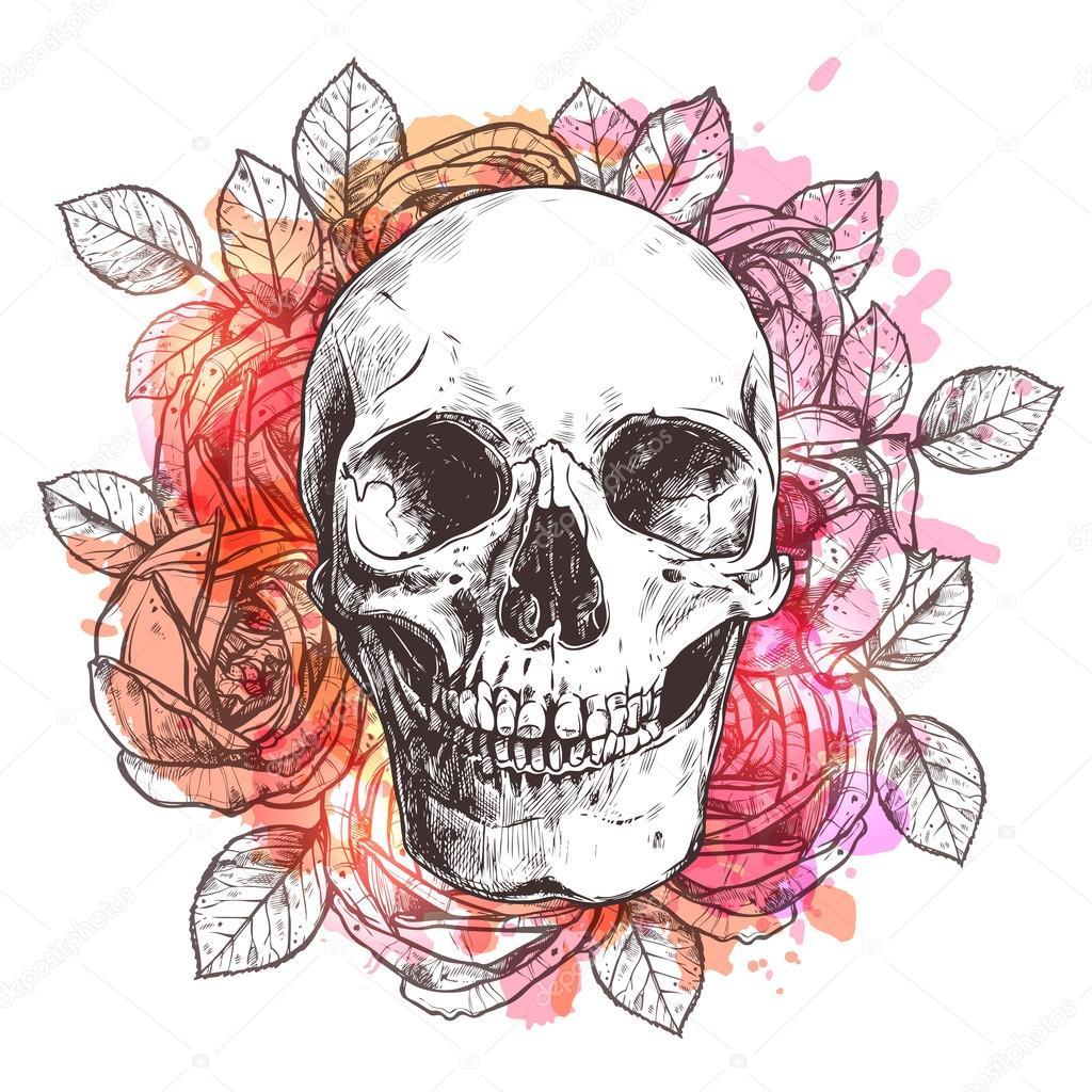 watercolor skull and flowers stock vector deer skull mount vector deer skull vector art
