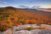 Endless forests in fall foliage at sunset, New Hampshire, USA — Stock Photo