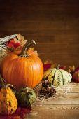 Nature morte automne rustique avec espace copie — Photo
