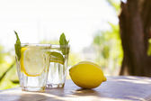 Lemonade with fresh lemon on natural background — Foto Stock