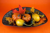 Gourds & Autumn Leaves — Stock Photo
