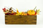 Gourds & Autumn Leaves in a Cheese Box — Stock Photo
