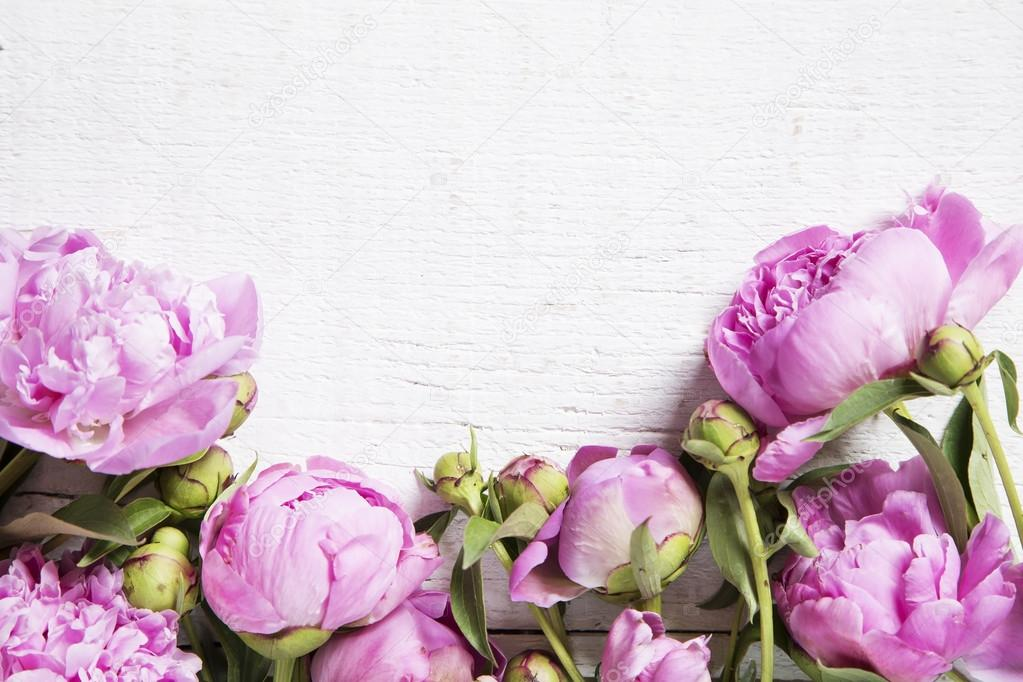 Пионовидные розы для открытки 337