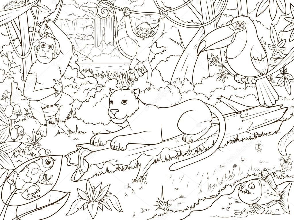 Animales Del Bosque Selva Libro Para Colorear De Dibujos