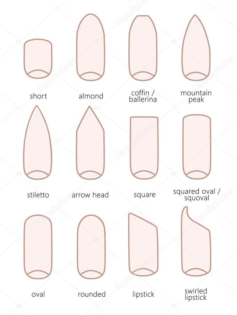 Forme de l ongle diff rent image vectorielle 113183020 - Forme d ongle ...