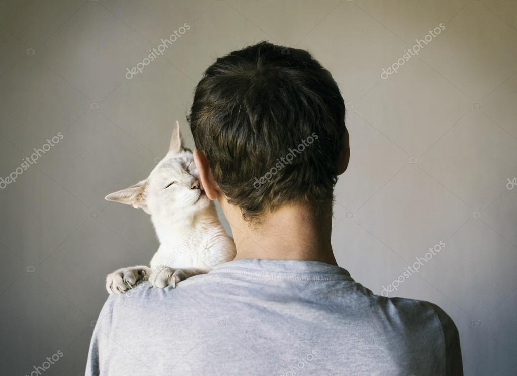 what does it mean when your cat headbutt yourself