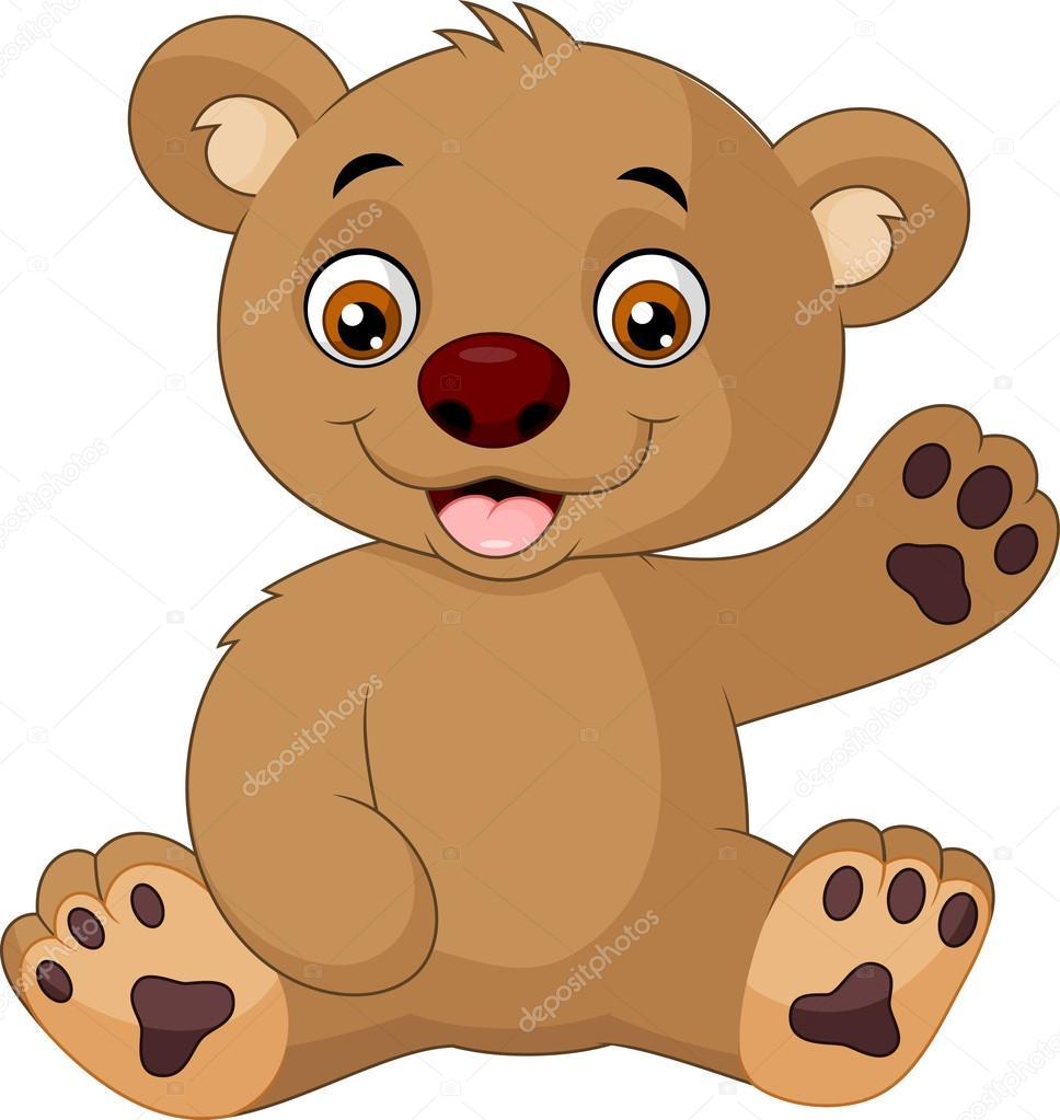 Baby bear face cartoon