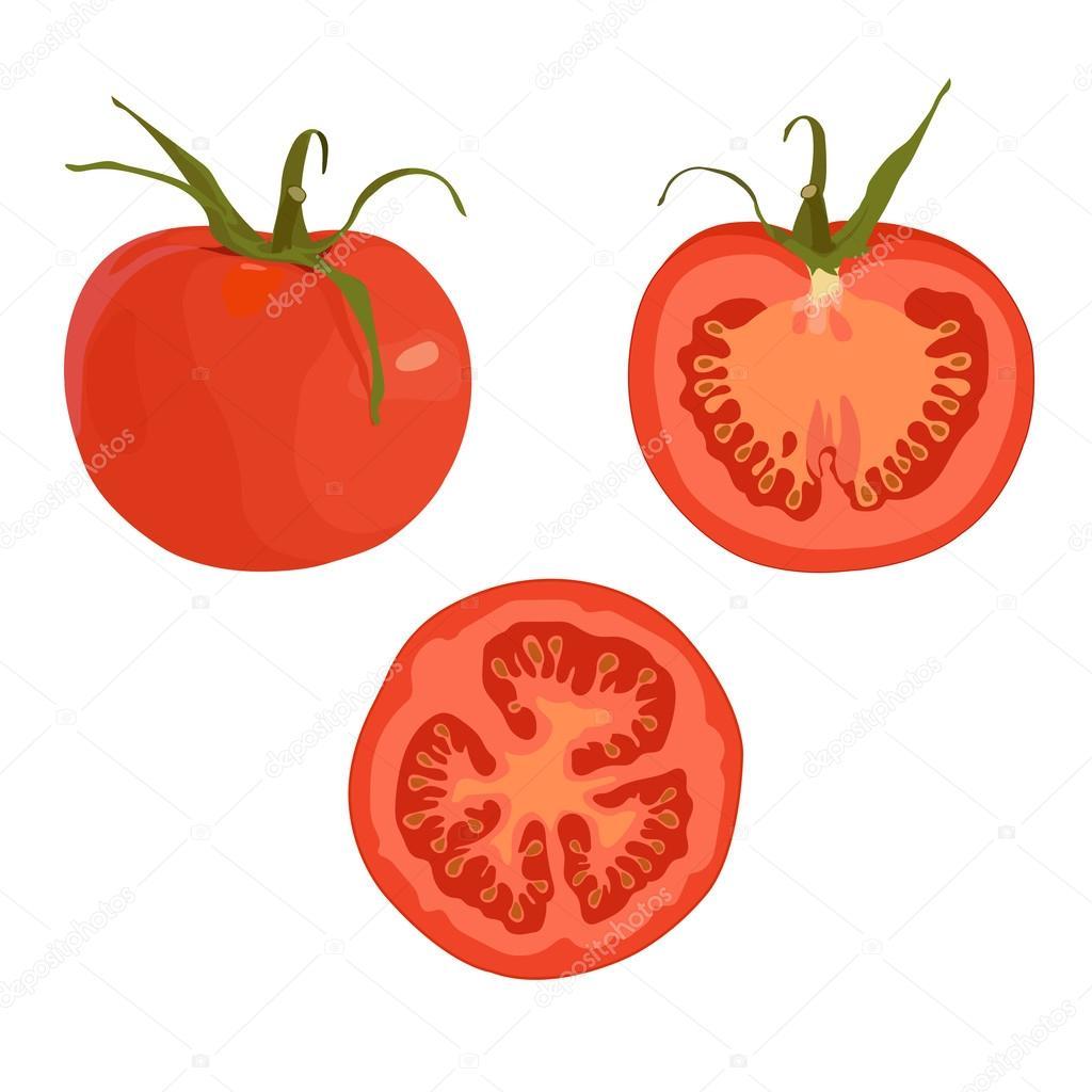 Dessin sur fond blanc d une tomate enti re et les tomates en tranches production - Tomate dessin ...