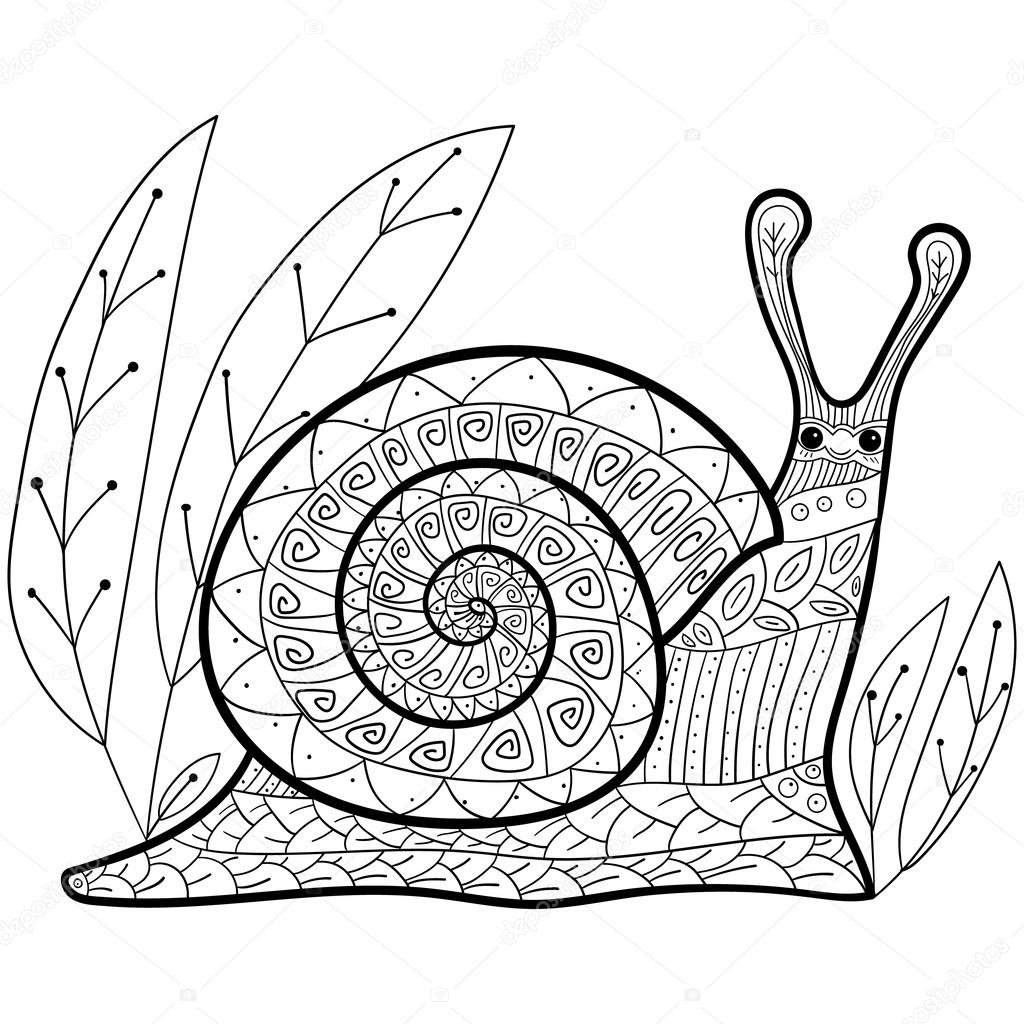 Adulte mignon escargot coloriage livre image vectorielle - Escargot dessin ...