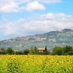 Постер, плакат: Tuscany landscape
