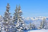 Paesaggio di montagna. Schladming. Austria