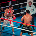 Постер, плакат: WBC EPBC boxing championship in Moscow