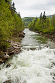 River Prut  in Yaremche, Carpathians, Ukraine