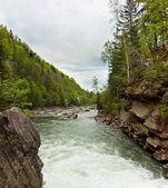 Prut River in Yaremche, Carpathians, Ukraine