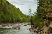 Prut River near fall Probiy in Yaremche, Carpathians, Ukraine