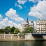 Постер, плакат: Notre Dam and Seine River