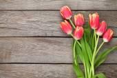 Színes tulipán fa tábla