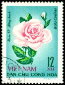 Vintage  postage stamp. The Flowerses of the rose Hong bach.