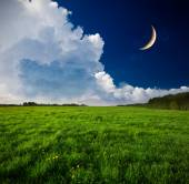 Krásná noční krajina