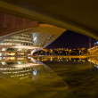 Постер, плакат: City of the arts and the sciences in the night