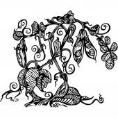 Curly shoots of peas Black and white drawing