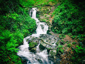 Waterfall in green forest with motion blur effect, the effect of the retro camera