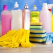 Постер, плакат: Set of cleaning products