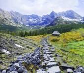 The mountains landscape
