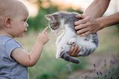 Dítě hraje s kočkou v zahradě