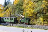 Parní vlak, Steinbach - Johstadt