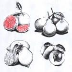 Постер, плакат: Set of drawings fruits