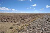 Altiplano. Bolívie