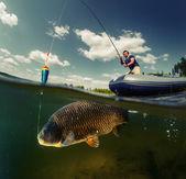 Rozdělit záběr rybář