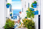 Malerische Straße von Mijas mit Blumentöpfe in Fassaden