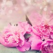 Постер, плакат: Pink peonies on wooden background