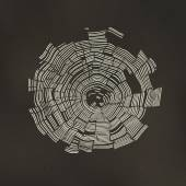 Tree Rings Background