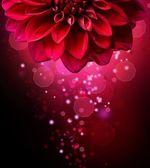 Krásná květina