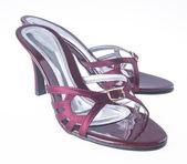 Scarpe. Scarpe donna isolate. scarpe. Scarpe donna isolate