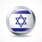 Israel flag button - vector illustration