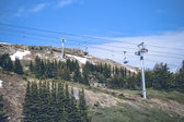 Mountain lift on a hill with pine trees