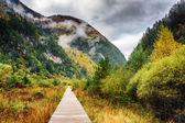Wooden boardwalk leading to mountains, Jiuzhaigou nature reserve